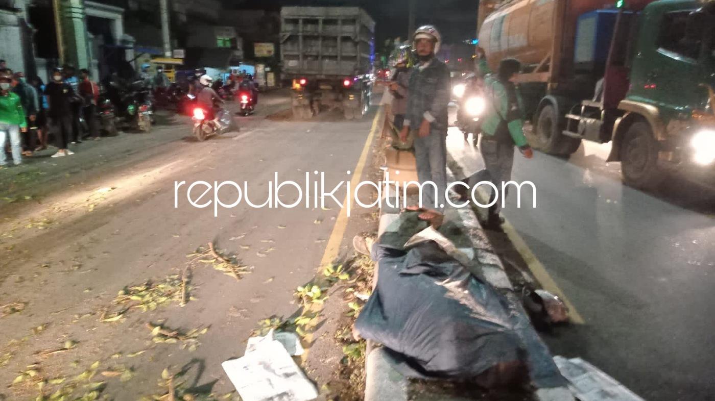 Pengendara Motor Mio Asal Bangsri Sukodono Tewas Tertimpa Pohon Tumbang di Jalur Surabaya - Mojokerto