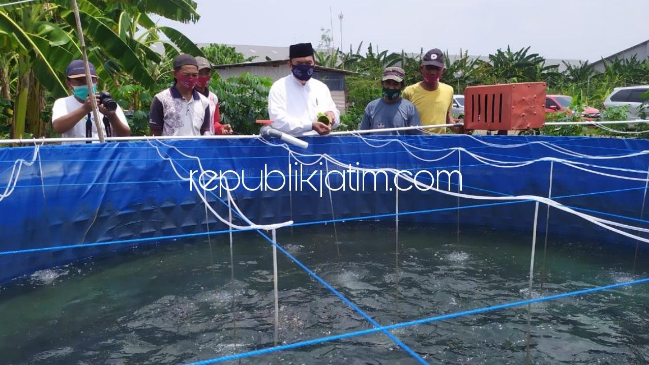 Siapkan Program Makan Ikan Gratis, BHS-Taufiq Berdayakan Pengembangan Budidaya Ikan di Sidoarjo