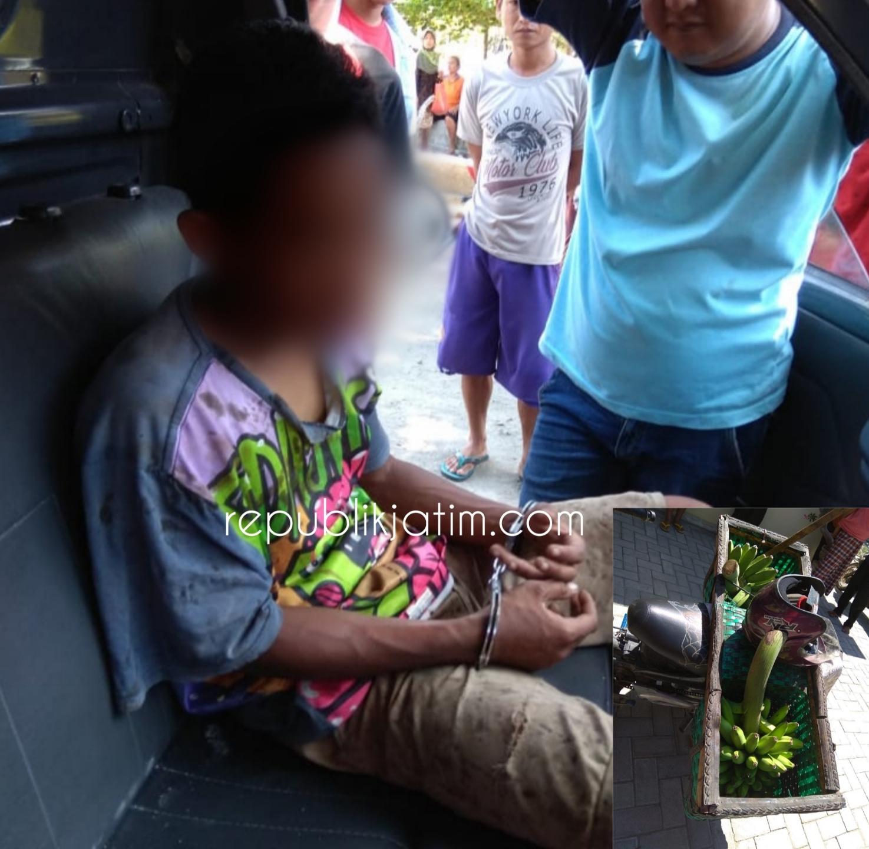 Jelang Lebaran, Remaja Asal Prandon Ngawi Curi Setandan Pisang