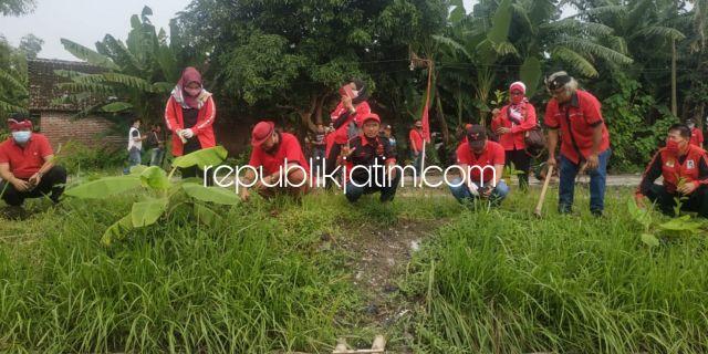 HUT ke 48, PDIP Sidoarjo Tanam Seribu Lebih Pohon di Wonoplintahan Prambon
