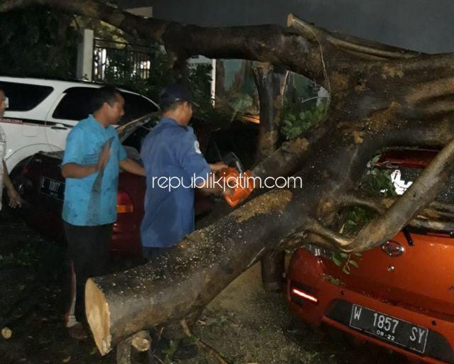 Tiga Mobil Parkir Ringsek Tertimpa Pohon Ambruk di Pusat Kuliner Sidoarjo