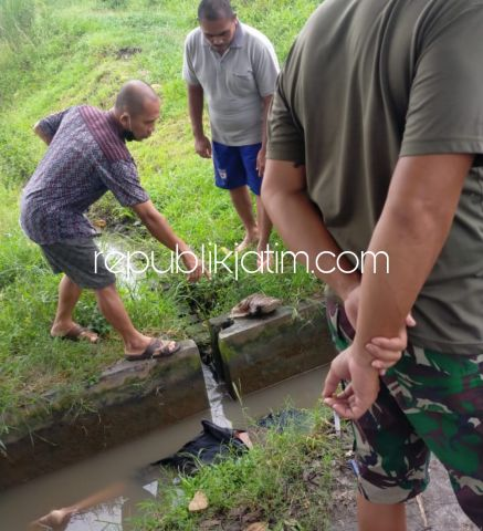 Mayat Pemuda Berpakaian Lengkap Tanpa Identitas di Sungai Sawah Gegerkan Warga Tulangan